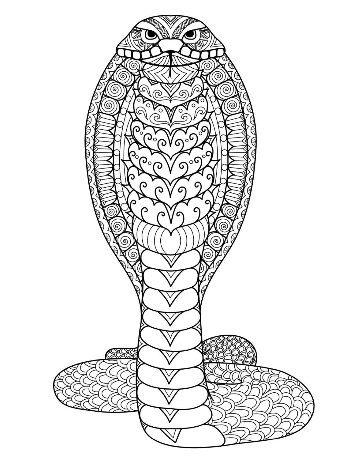Coloriage gratuit serpent cobra à imprimer par Bimbimkha