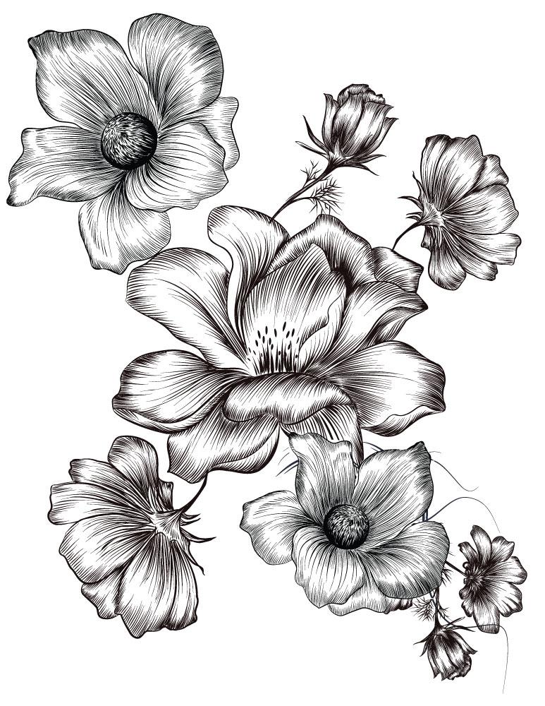 Coloriage Gratuit Fleurs Imprimer.Petites Fleurs Coloriages Ete A Imprimer Image Gratuite Artherapie Ca