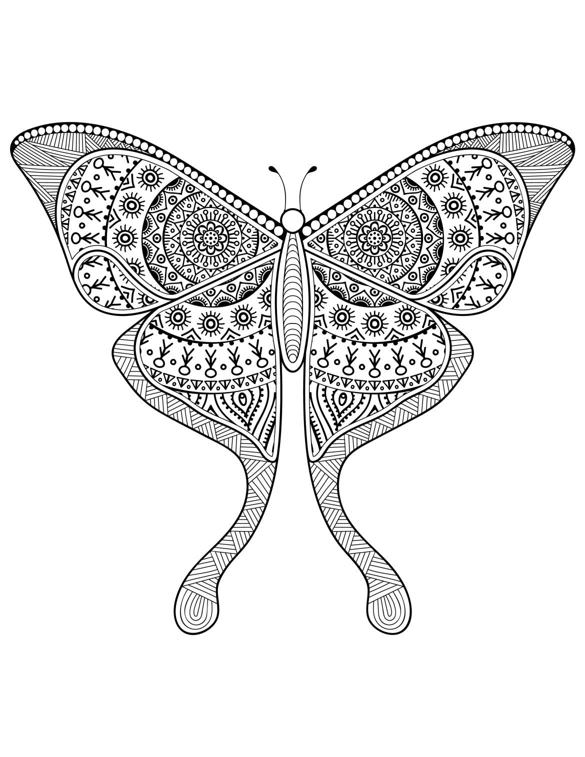 Dessin Pour Adulte Délicat Papillon à Imprimer Difficile Artherapie Ca