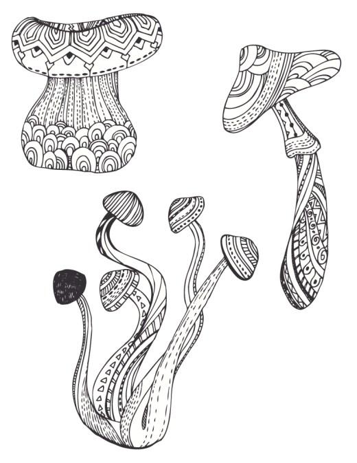 Image gratuite a imprimer champignon automne