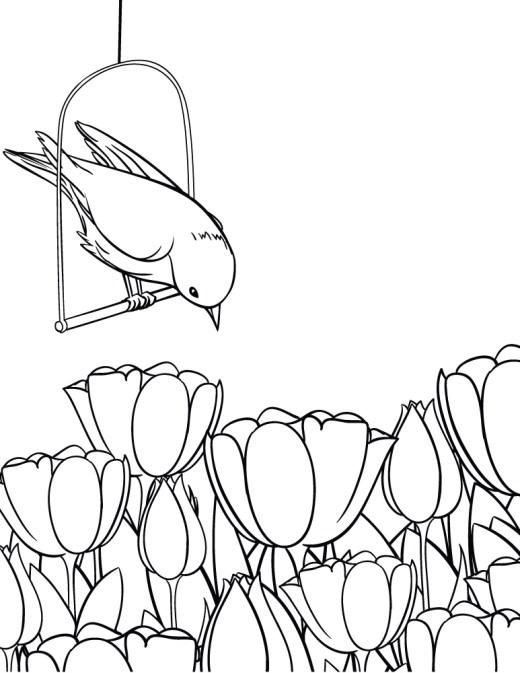 Oiseau et tulipes coloriages été à imprimer Artherapie
