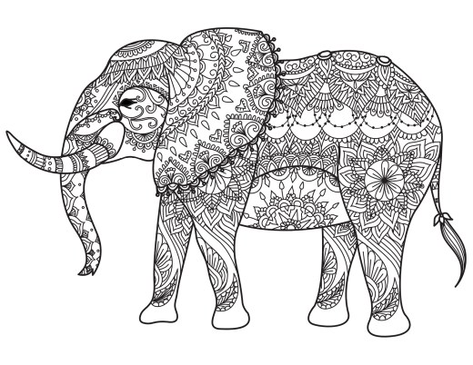 Coloriage animaux à imprimer pour adulte par Bimbimkha