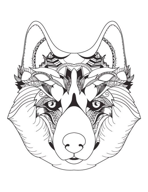 Tête de loup coloriage magnifique mindfulness colouring