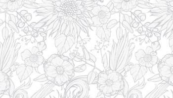 Page à Dessiner Cadre Fleurs Couleurs Artherapieca