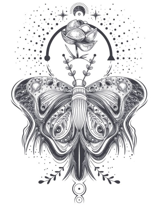 Imprimer un coloriage pour adulte papillon espace