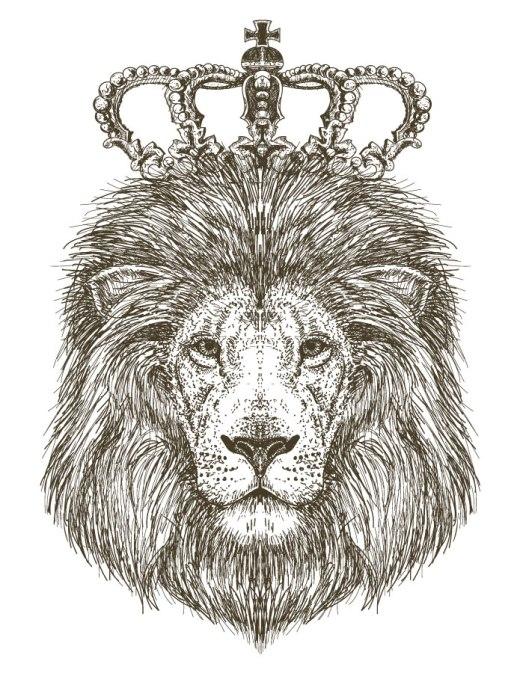 Roi lion coloriage pour imprimer et dessiner