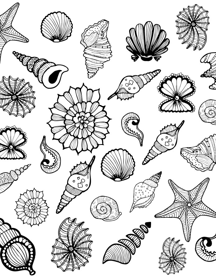 Coquillages coloriage anti stress adulte imprimer - Coloriage de coquillage ...