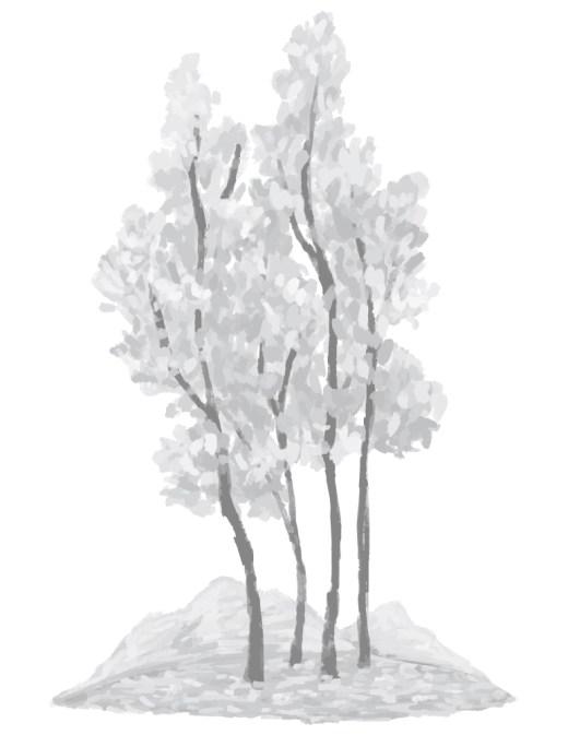 Imprimer dessin grayscale nature arbre à colorier