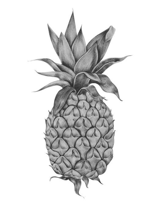 Photo nourriture noir et blanc ananas à colorier pour adulte