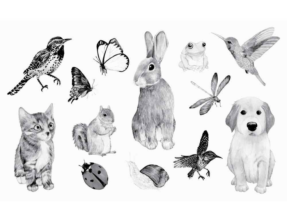 Dessin animaux domestique stamp gratuit à imprimer
