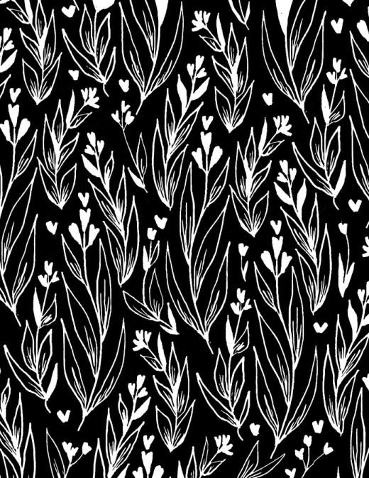 Délicates fleurs de St-Valentin fond noir