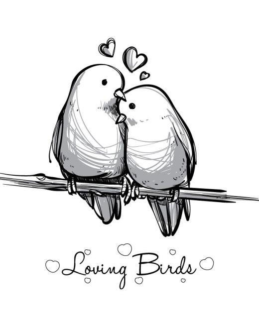 Coloriage st Valentin love bird imprimer carte
