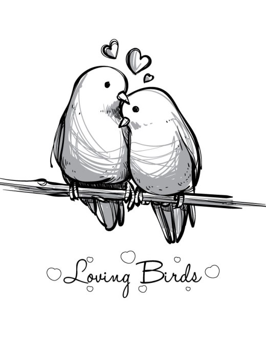 Coloriage st Valentin love bird imprimer carte