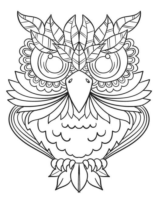 Imprimer un coloriage hiboux pour dessiner