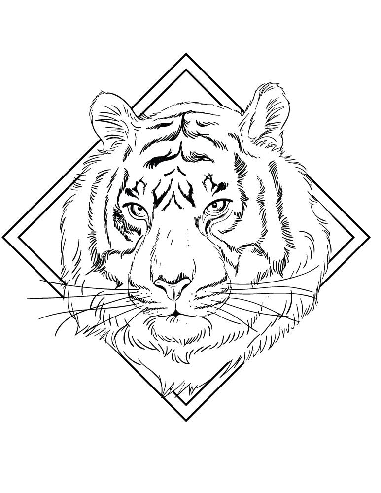 Felin Tigre A Colorier Artherapie Pour Adulte Artherapie Ca
