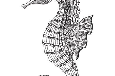 Hippocampe coloriage gratuit pour adulte