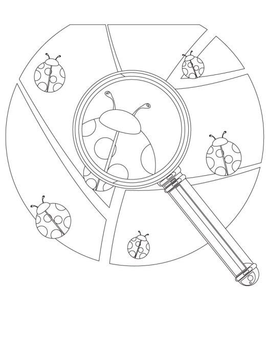Coloriage facile coccinelle dessin à imprimer