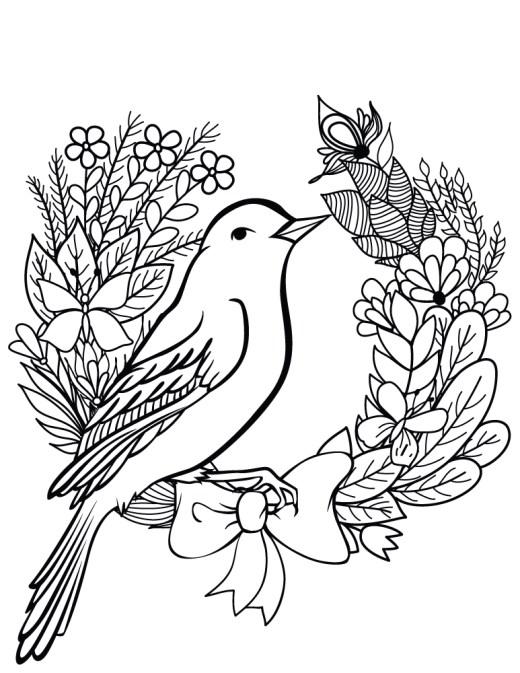 Oiseau printemps dessin a colorier gratuit