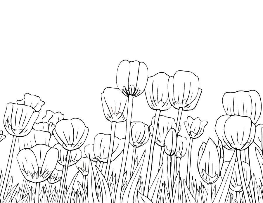 Tulipes dessin à colorier du printemps