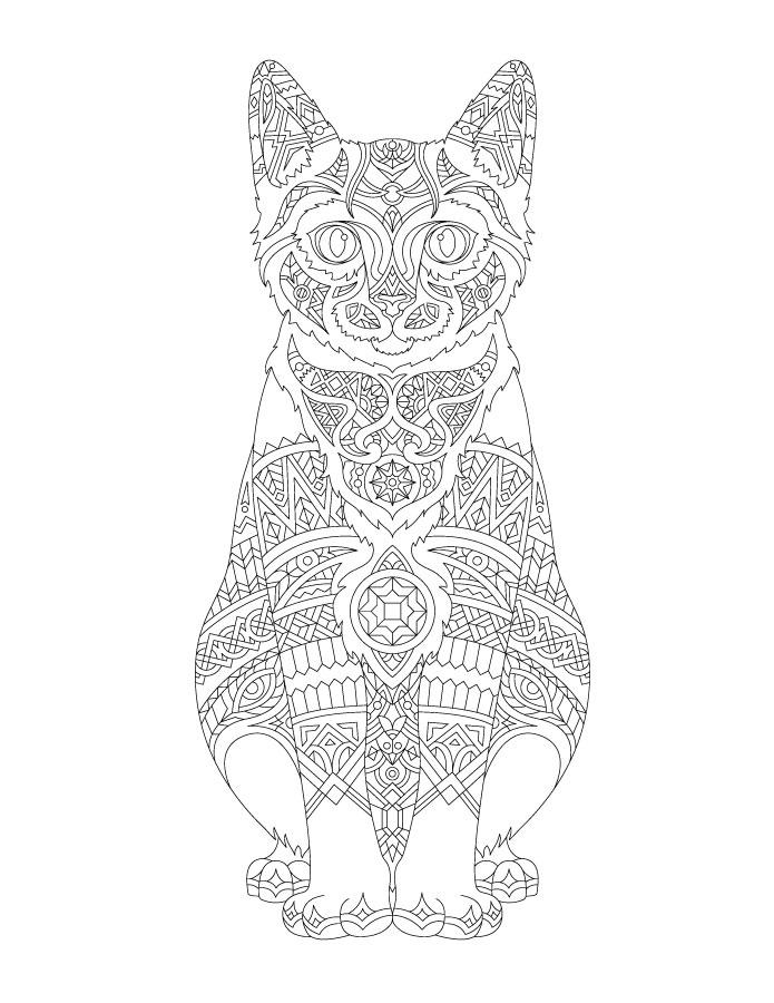 Dessin pour adulte chat mandala
