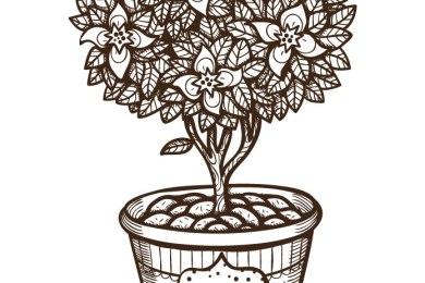 Arbre en fleurs à dessiner pour adulte