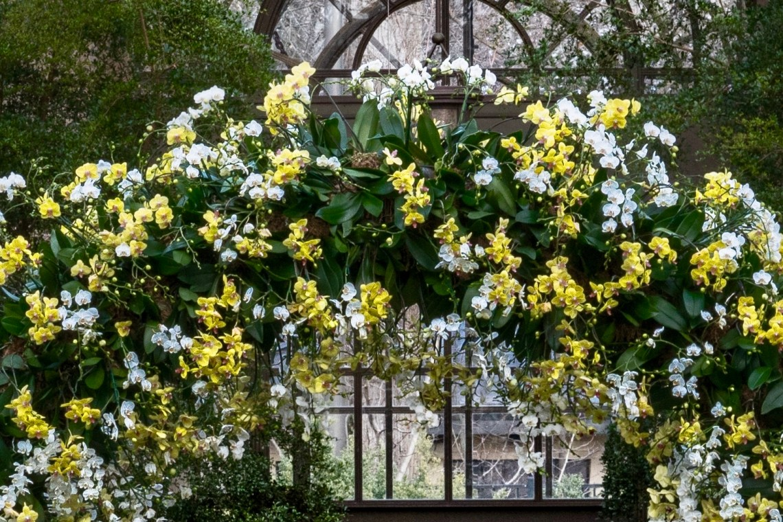 Detail, Grand Arch of Orchids
