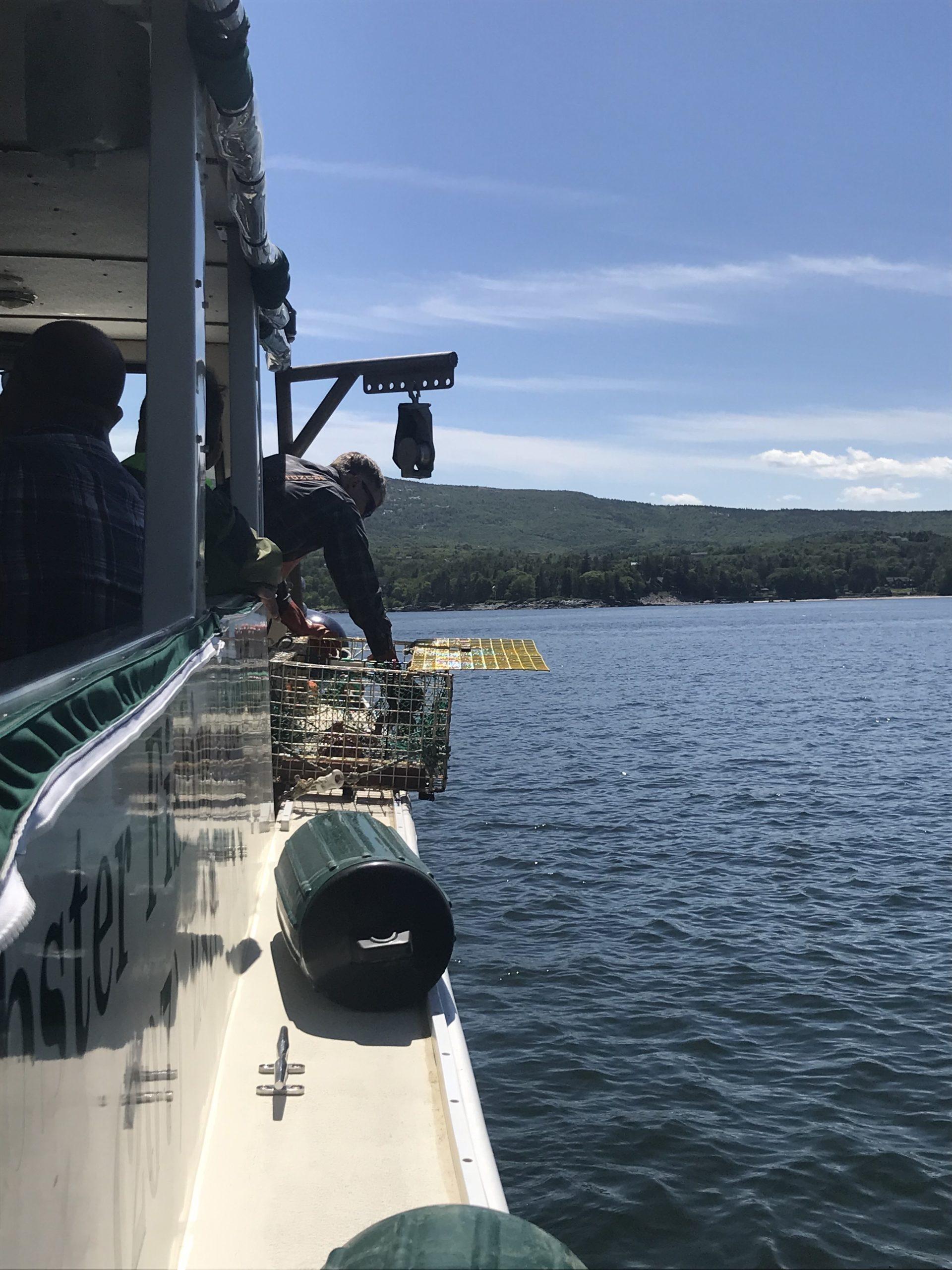 bateau peche homard bar harbor mer