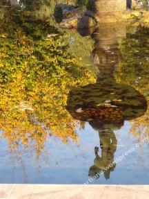 Fontaine biterroise