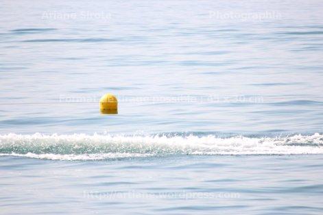 lignes de flottaison