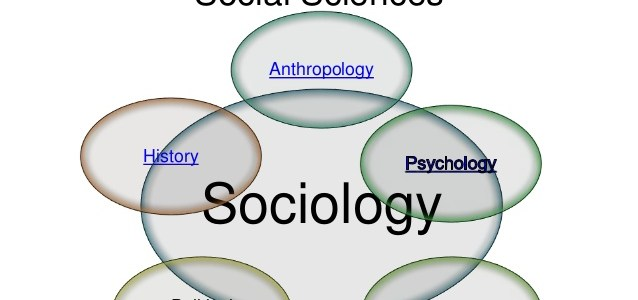 Sociology and its Relationship with Other Social Sciences