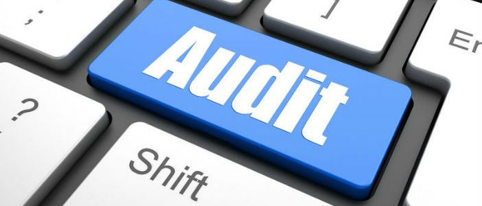Audit and Inspection of Indian banking company