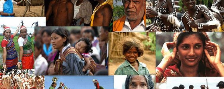 Tribal Communities: Their Social and Economic Structure in India