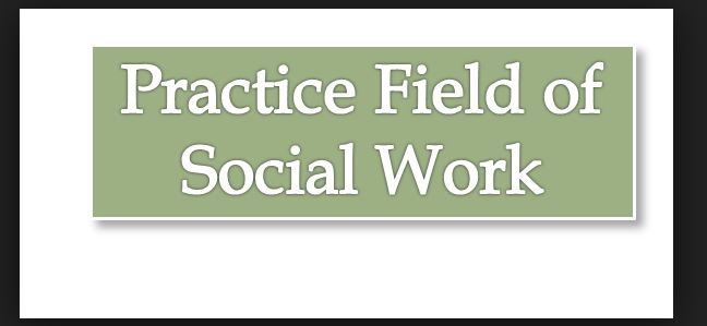 Fields of Social Work Practice