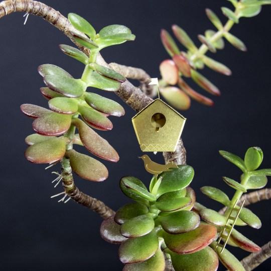 Mini nichoir botanopia 1