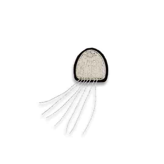petite meduse