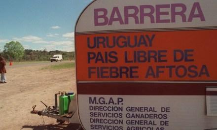 Automovilista denuncia malos tratos en la barrera sanitaria cuando le decomisaron 10 kilos de maíz