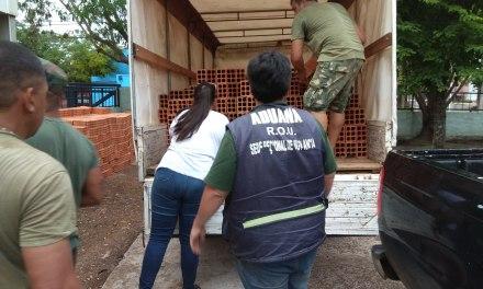 ADUANAS INCAUTÓ MÁS DE 5000 TICHOLOS DE OBRA EN INFRACCIÓN ADUANERA