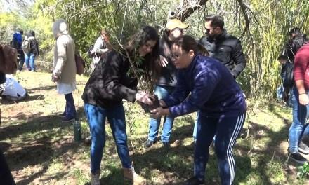 «PLANTATÓN»: SE PLANTARON MÁS DE MIL ARBOLES EN ARTIGAS