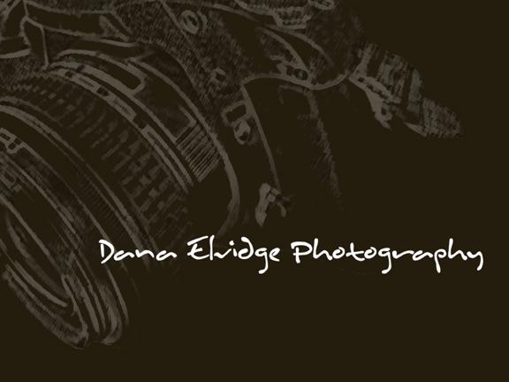 Dana Elvidge Photography logo