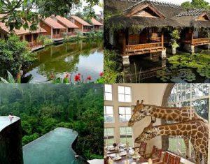 hotel alam