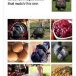Kenali Sistem Terbaru dari CAPTCHA Ini