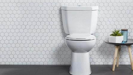 toilet (wc)