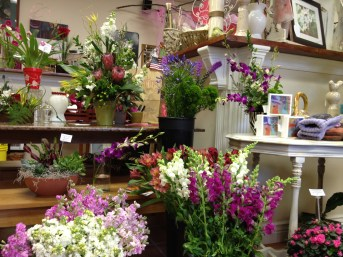 Flowers_galore