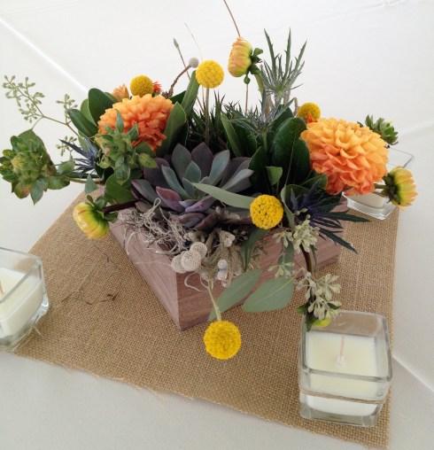 Succulent_centerpieces2