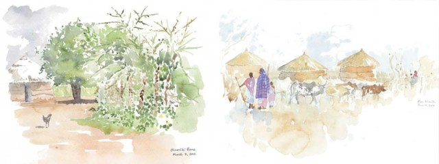 Maasai Boma and Leaving the Boma, field sketches by Alison Nicholls