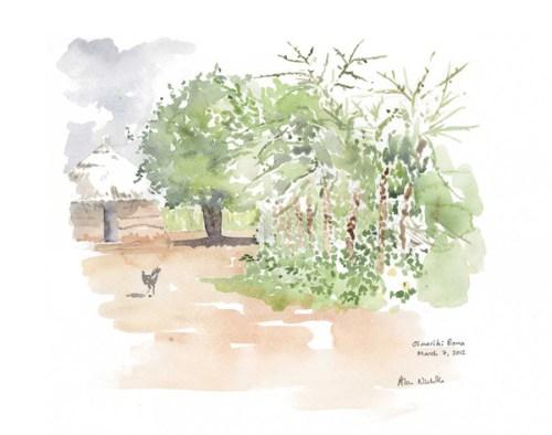 Maasai Boma Field Sketch by Alison Nicholls