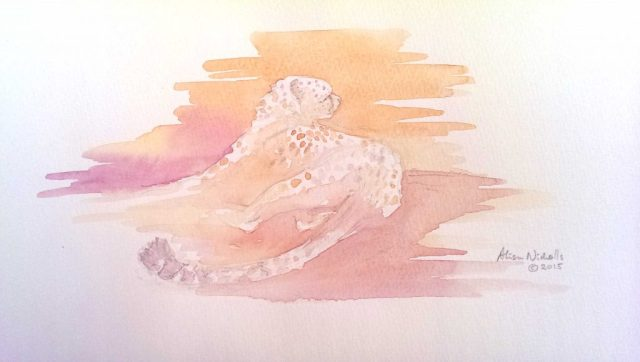 Cheetah watercolor sketch by Alison Nicholls
