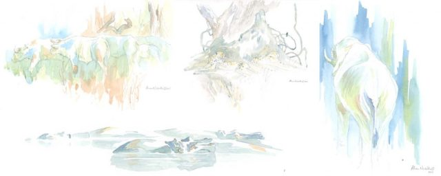 African Field Sketches by Alison Nicholls ©2015