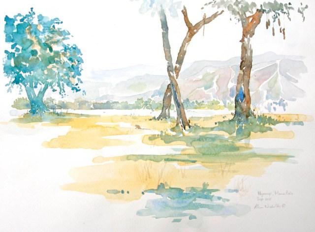 Mana Pools Field Sketch by Alison Nicholls
