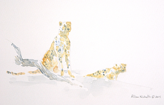 Cheetah field sketch by Alison Nicholls
